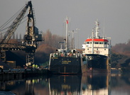 Curlew IMO 8519954 794gt Built 1986 General Cargo Ship Flag UK