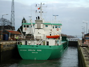 Arklow Rose  IMO 9238399