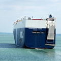 Capricornus Leader IMO 9283863 61854gt Built 2004 Vehicles Carrier Flag Panama