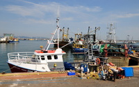 Trawlers at Brixham Harbour
