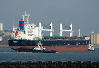 Giannutri IMO 9587879 Built 2012 Bulk Carrier