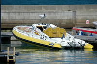 Powerboat D50 Hot Lemon V