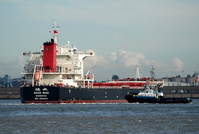 Good Wish IMO 9502623 41074gt Built 2011 Bulk Carrier