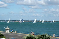 Cowes Week 2014 at Egypt Point