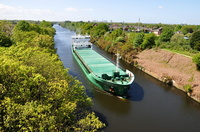 Arklow Forest in for Cargills 10th May 2018