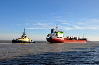 Sichem Orchid with Svitzer Sussex
